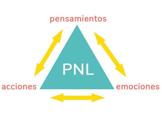 Pnl esquema